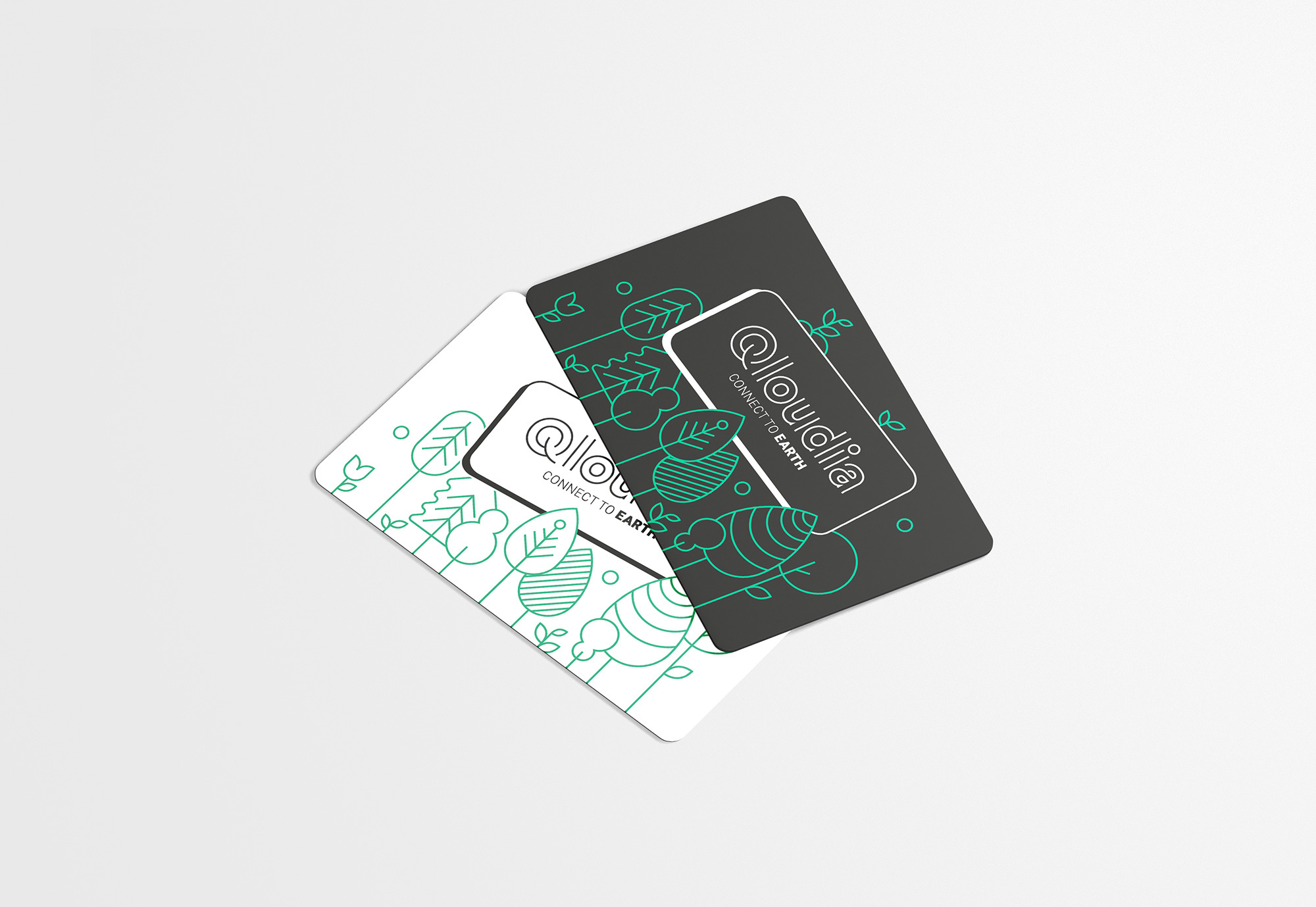Qloudia Cards 2